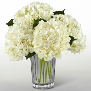 The Ivory Hydrangea Bouquet by Vera Wang